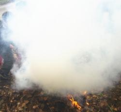 たき火と煙